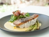 Pan Seared Barramundi with Corn Puree, Charred Asparagus, Pancetta, Corn & Herb Salad