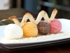 Ice-Creams-Sorbets-